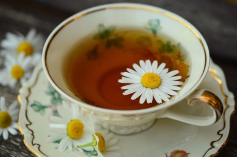 Kostenlose Teeproben
